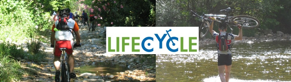 lifecycles3